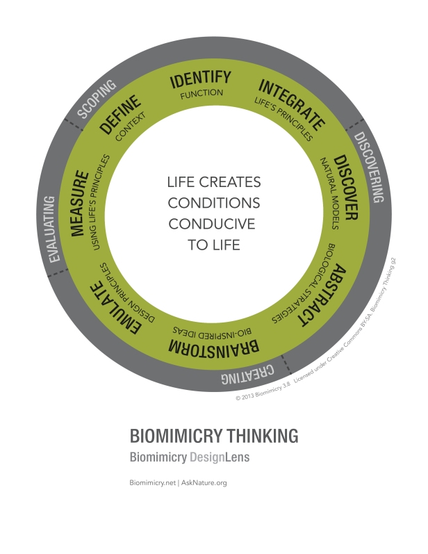 Biomimicry38_DesignLens_Biomimicry_Thinking_WEB